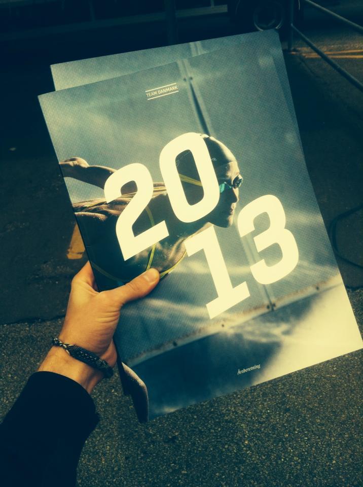 2013 års rapport, rikke møller